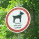Зона выгула собак