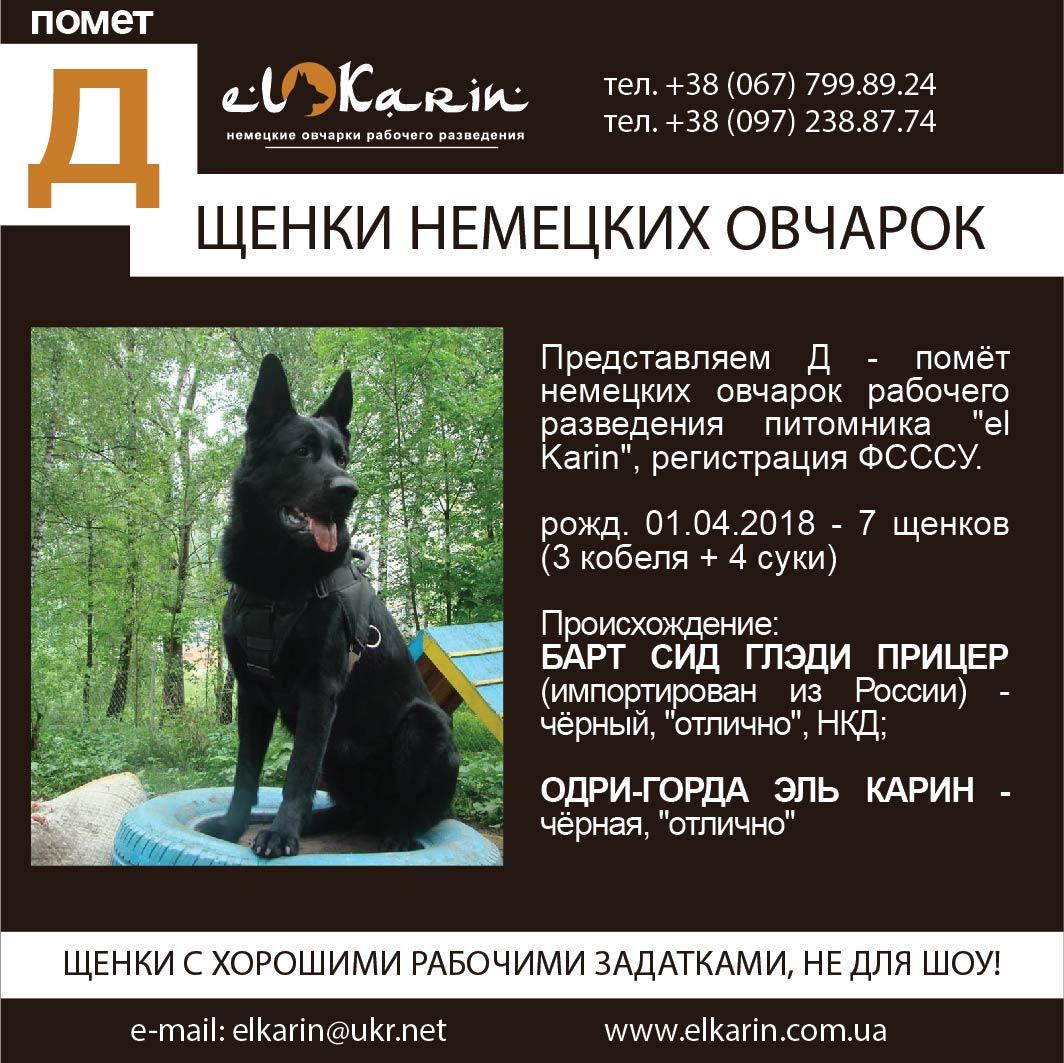 Poster_D_010418