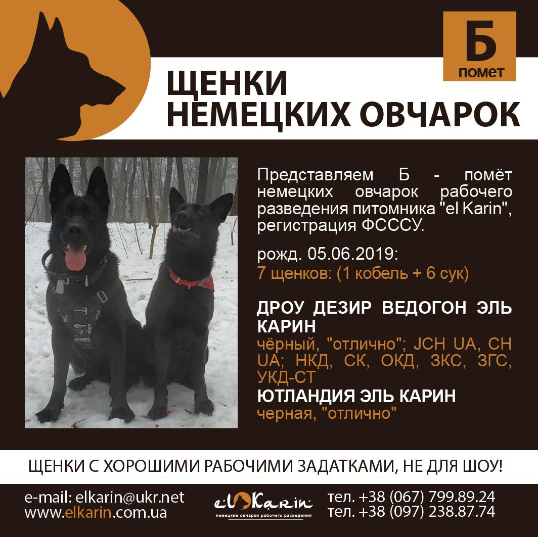 Poster_B_05062019