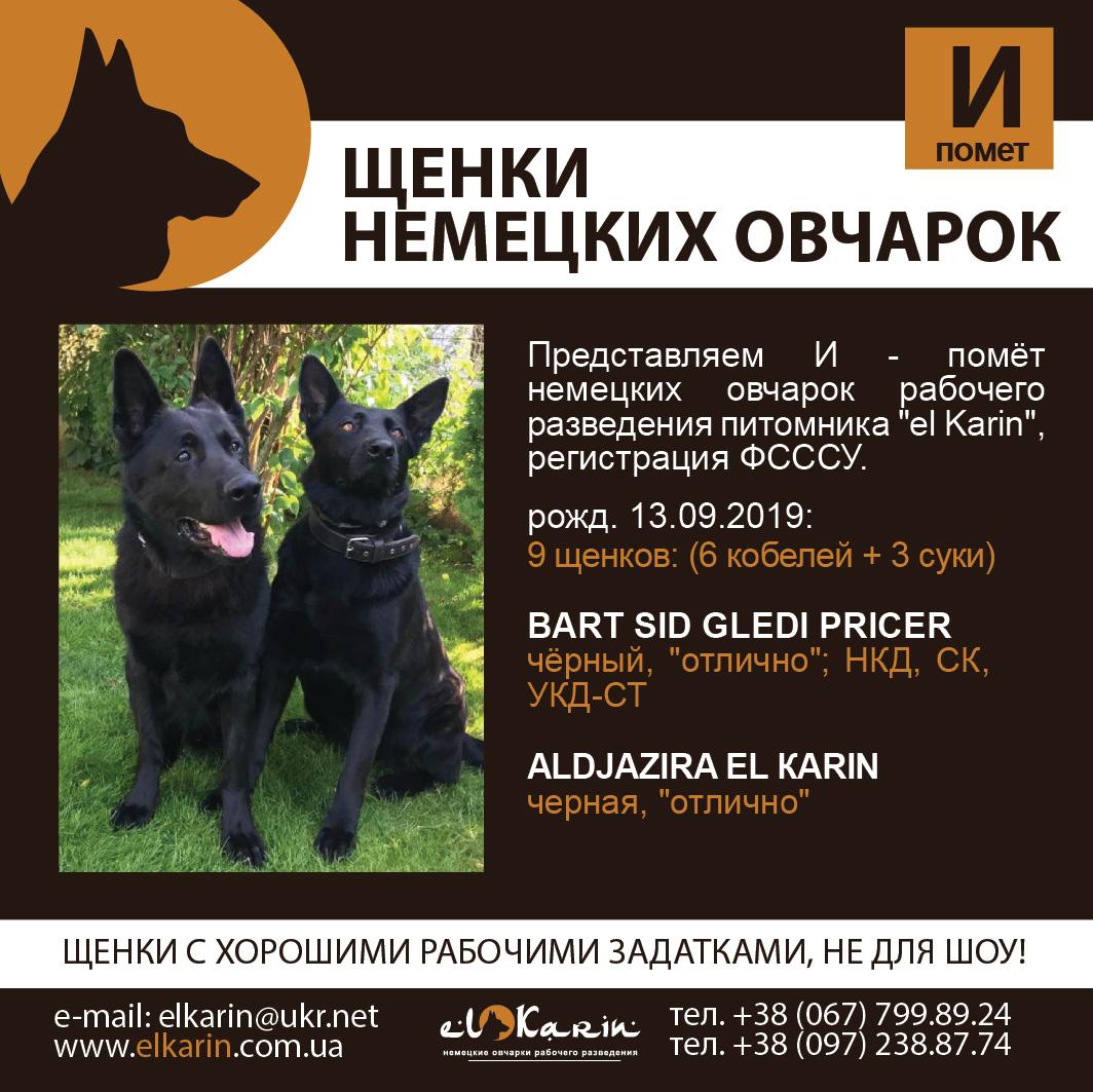 Poster_I_13092019
